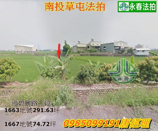 南投法拍草屯鎮法拍農地新光段水稻種植356坪共計二筆土地