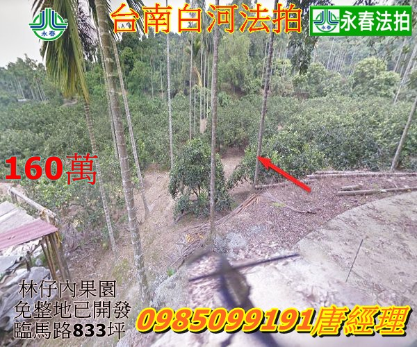 台南市白河區法拍農地果園埤子頭段五汴頭小段834坪